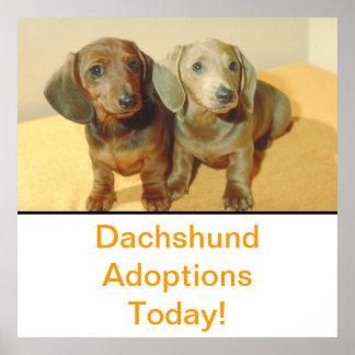 Dachshund Puppies Adoption Poster