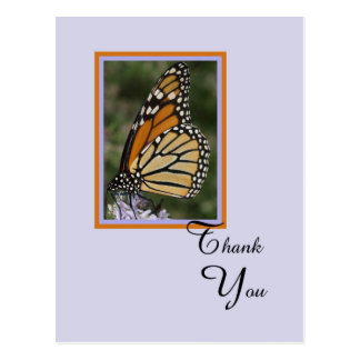 Death or Sympathy Thank You Postcard -- Butterfly