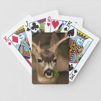 deer poker deck