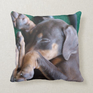 Doberman Pinscher Puppy Pillow Cushions