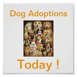Dog Adoptions Today Signs Poster
