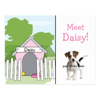 Dog Announcement - Girl Postcard