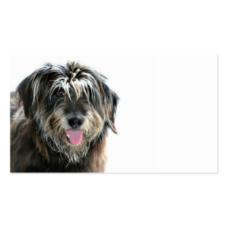 Dog groomers challenge pack of standard business cards
