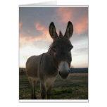 Donkey Art Greeting Card