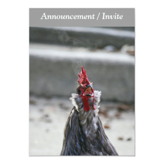 Double Sided Invitaion, Rooster 13 Cm X 18 Cm Invitation Card