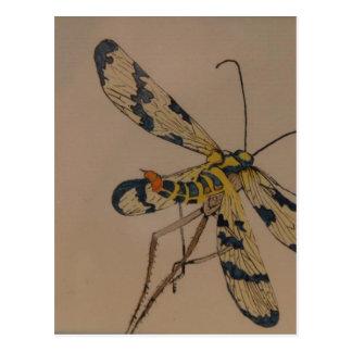 dragon fly 1990 postcard