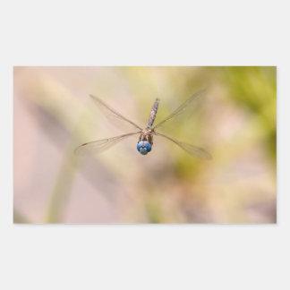 Dragonfly in Flight Photo Rectangular Sticker