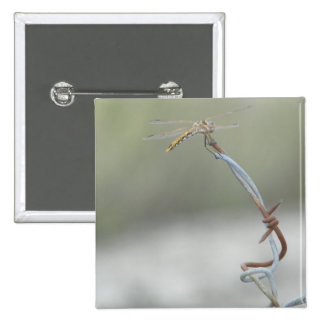 Dragonfly on Barb wire 15 Cm Square Badge