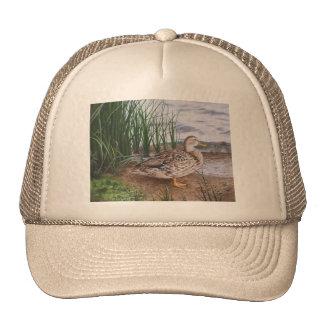 DUCK-ROUND LAKE CAP
