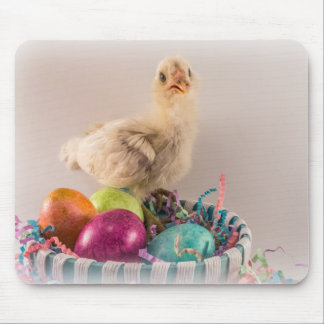 Easter Egger Chick in Basket with Eggs Mouse Pad
