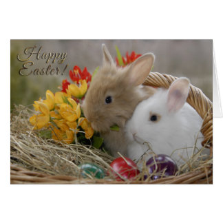 """Easter - """"Happy Easter"""" Baby Bunnies Greeting Card"""