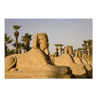 Egypt, Luxor. The Avenue of Sphinxes leads to Photo Art
