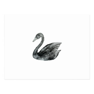 Elegant black white hand painted watercolor swan postcard