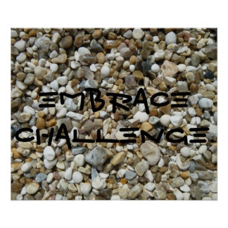 Embrace Challenge. Poster