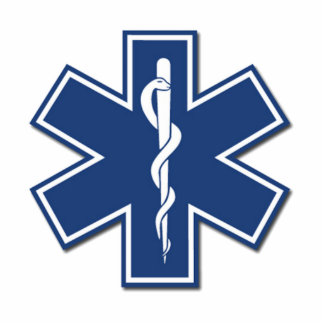 EMS Star of Life Standing Photo Sculpture