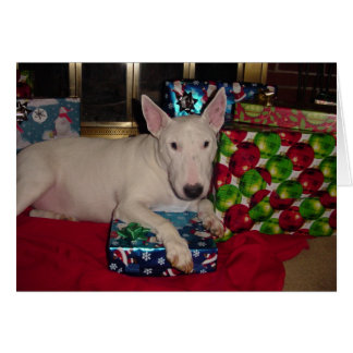 english bull terrier christmas present fireplace greeting card