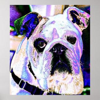 English Bulldog Pop Art Poster
