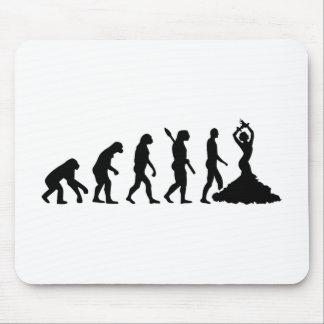 Evolution Flamenco Mouse Pad