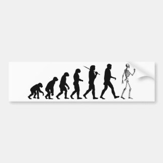 Evolution Skeleton Bumper Sticker