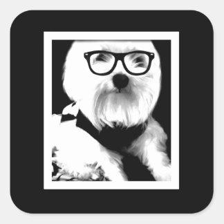 Ewok. Cute maltese with glasses Square Sticker