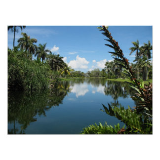 Fairchild Tropical Botanic Garden Poster