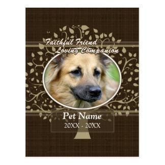 Faithful Friend Custom Pet Sympathy Postcard