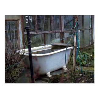 Fancy a bath? postcard