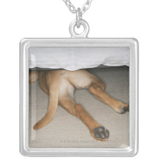 Feet and tail of yellow lab dog hidden under bed square pendant necklace