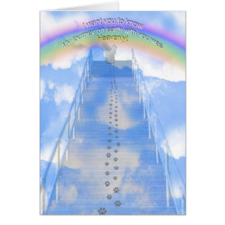Female Cat Sympathy Card- Stairway to Heaven Greeting Card