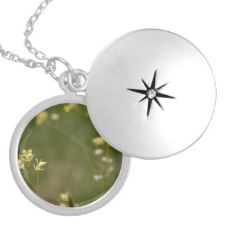 Field of Yellow Flowers Round Locket Necklace
