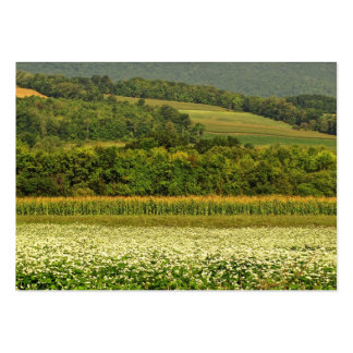 Fields of Grain ATC Pack Of Chubby Business Cards