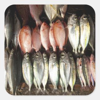 Fish at market, town of Kalabahi, Alor Island, 2 Square Sticker
