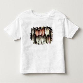 Fish at market, town of Kalabahi, Alor Island, 2 Toddler T-Shirt