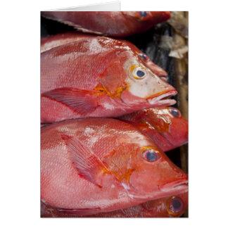 Fish at market, town of Kalabahi, Alor Island, Greeting Card
