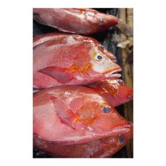 Fish at market, town of Kalabahi, Alor Island, Photo Print