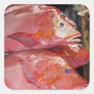 Fish at market, town of Kalabahi, Alor Island, Square Sticker