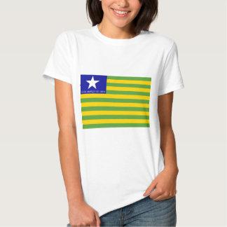 Flag of Piauí T-shirts