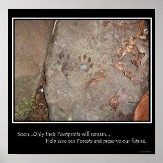 Footprints Remain Poster