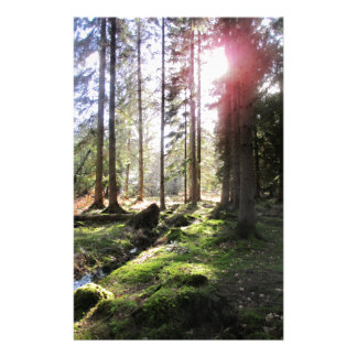 Forest View 1 Personalized Stationery