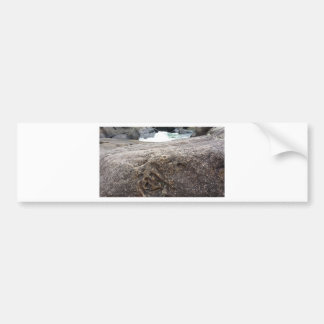 Fossil Rock Bumper Sticker