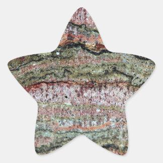 Fossilized Stromatolites Star Sticker
