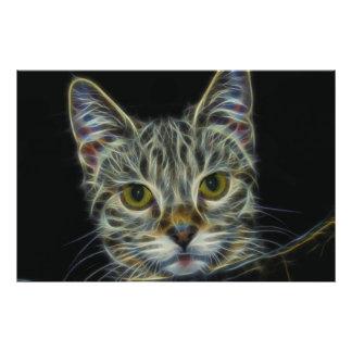 Fractal Cat Photo