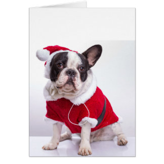 French Bulldog In Santa Costume For Christmas Greeting Card