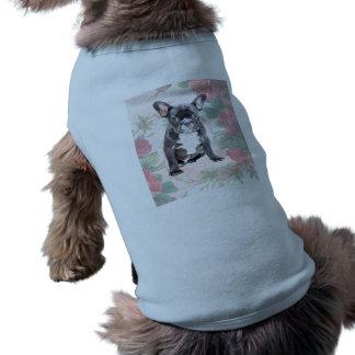 French Bulldog valentine roses dog clothes