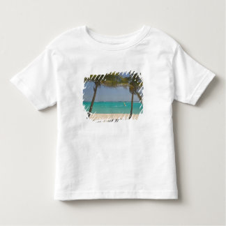 French West Indies, Guadaloupe, Marie, Galante 2 Tees