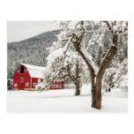 Fresh snow on red barn postcard