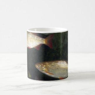 Freshwater Silver Fish Mug