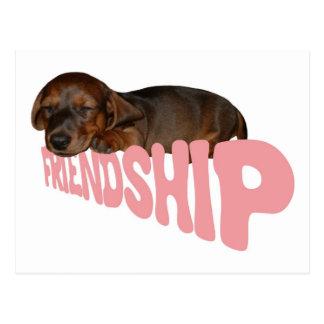 Friendship puppy / dog is man's best friend, pink postcard