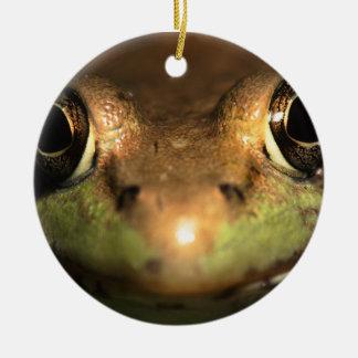 frog face round ceramic decoration