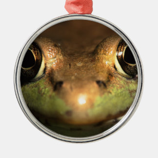 frog face Silver-Colored round decoration